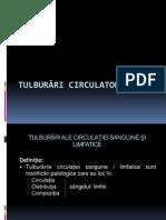 TULB_CIRC_A