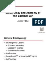 Ear Anatomy & Tibbo