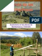 La Ruta de Las Pachachacas