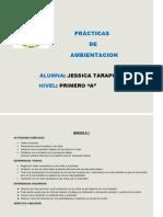PRACTICAS DE AMBIENTACION