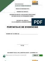 Documentos Para Port a Folio de Evidencias IRMO 2011