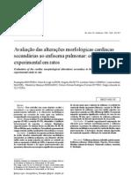 Avaliação das alterações morfológicas cardíacas