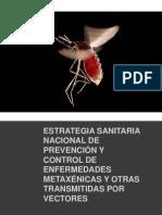 16452114 Estrategia Sanitaria Nacional de Prevencion Enf Metaxenicasy