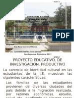 Proyecto Identidad Cultural
