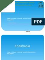 Endotropìa EXPO
