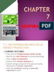 Respiration Chapter 7 Biology Form 4