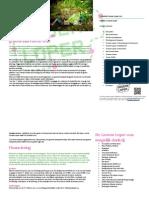 Evaluatie Groene Loper 2011