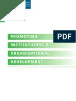 2.DFID Promoting Institutional Develpment Guide