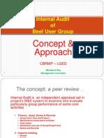 Internal Audit BUG 2011