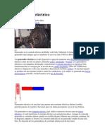 GeneradorES CIRO EXPOdocx