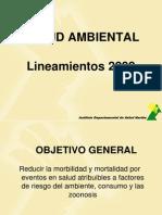 lineamientos salud ambiental 2009