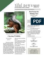 Volume 4, Issue 13