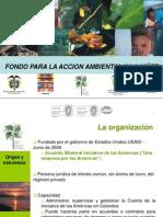 01. PresentacionFondo2011