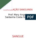 bioquimica coagulação sanguinea
