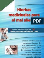 Hierbas Medicinales Para El Mal Aliento