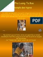 Le Temple des Tigres