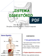 Aula 7 - Sistema Digestório