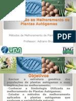 Introdu%C3%A7%C3%A3o ao Melhoramento de Plantas Aut%C3%B3gamas-GAG 106