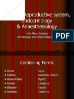 Systemic Terminology (Urology,Gynecology,Endocrine, Anaesthesia)