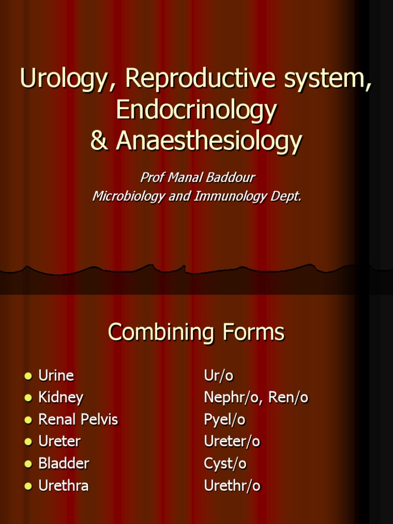 Systemic Terminology (Urology,Gynecology,Endocrine, Anaesthesia ...