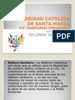 RELLENOS SANITARIOS DDP