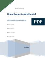 Licenciamento Ambiental - Tópicos