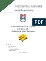 Proyecto (informe)