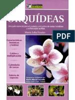 Orquideas JF