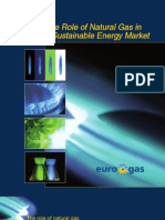 Brochure on the Role of Natural Gas in a Sustainable Energy Market