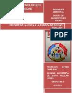 Reporte Roallidy Por Alejandra Lomeli