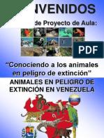 Ejemplos Fauna Extincion Venezuela