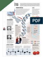 ADN y genética