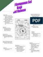 Fungsi Komponen Sel Haiwan