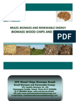 Brazil Biomass and Renewable Energy