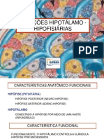 Relações_hipotalâmicas_e_hipofisiárias