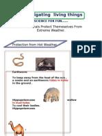 Notes n Worksheets
