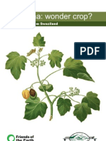 Jatropha Wonder Crop