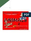 animal flash cards 2