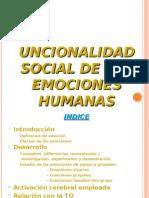 Trabajo Grupo E-TEM (Funcionalidad Social de Las Emociones