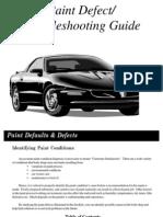 Paint Defect Guide