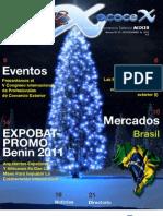 Revista Comex No 33 - Noviembre de 2011