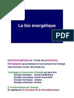 Bio énergétique_cours