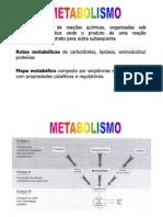 METABOLISMO [Modo de Compatibilidade