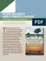 IPFRI Brief
