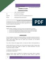 informe nº11