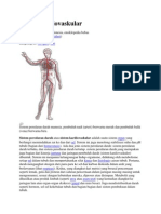 Anatomy Dasar