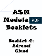 4- Adrenal Booklet