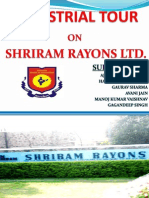 Final Ppt on Shri Ram Rayons