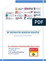 Risk Assessment (BP Deepwater Horizon Disaster)
