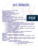 Proiect Didactic Desen Clasa a IIa Margulescu Adela